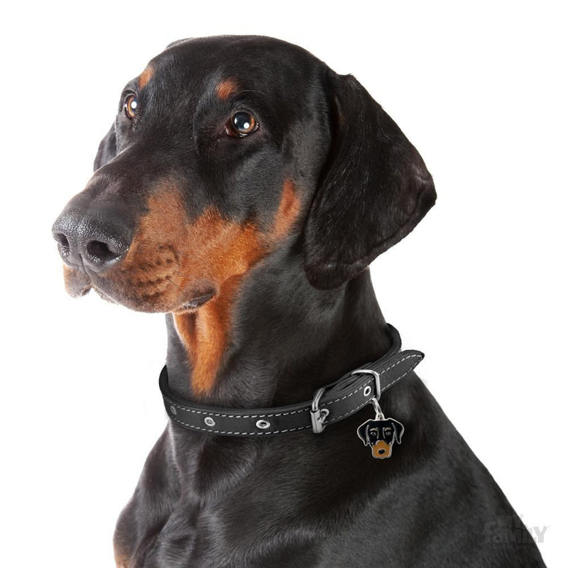 My Family Dobermann Dog I.D. Tags - 3B