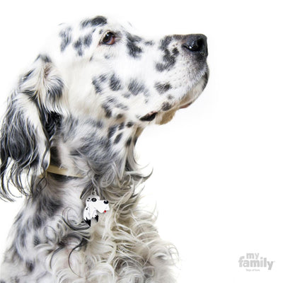 My Family English Setter Dog I.D. Tags - 3B