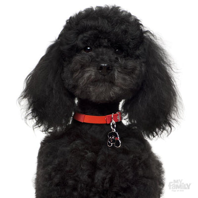 My Family Friends Black Poodle Dog I.D. Tag