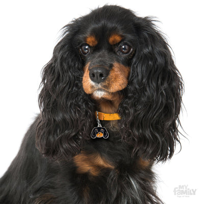 My Family Friends Black & Tan Cavalier King Dog I.D. Tag
