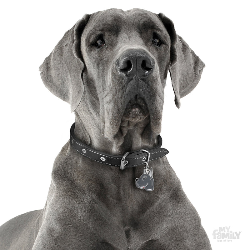 My Family Friends Blue Great Dane Dog I.D. Tag