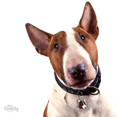 My Family Friends Brindle and White Bull Terrier Dog I.D. Tag
