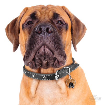 My Family Friends Bullmastiff Dog I.D. Tag