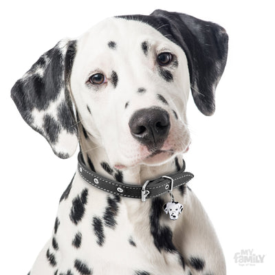 My Family Friends Dalmatian Dog I.D. Tag