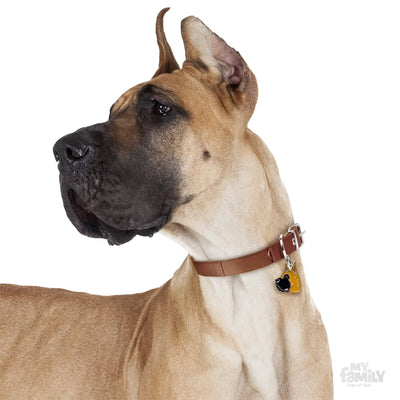 My Family Friends Fawn Great Dane Dog I.D. Tag