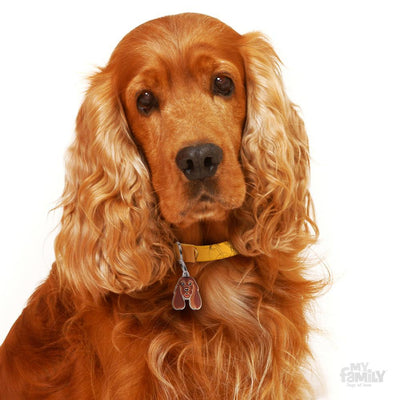 My Family Friends Golden Cocker Spaniel Dog I.D Tag