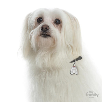 My Family Friends Maltese Dog I.D Tag