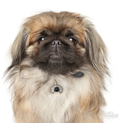 My Family Friends Pekingese Dog I.D. Tag