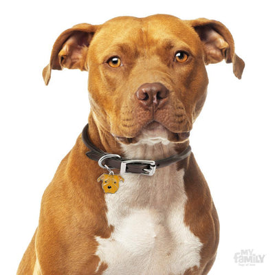 My Family Friends Red American Staffordshire Terrier Dog I.D Tag