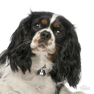 My Family Friends Tricolour Cavalier King Dog I.D. Tag