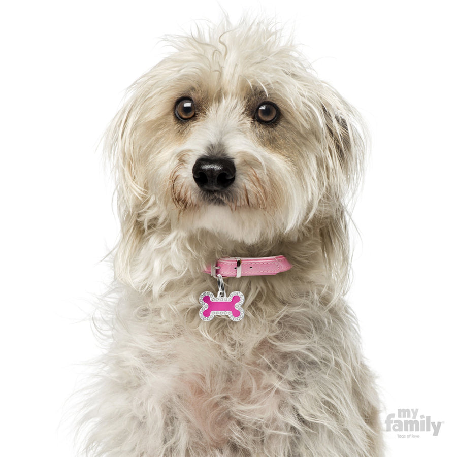 My Family Glam Fuchsia Small Bone Dog I.D. Tag