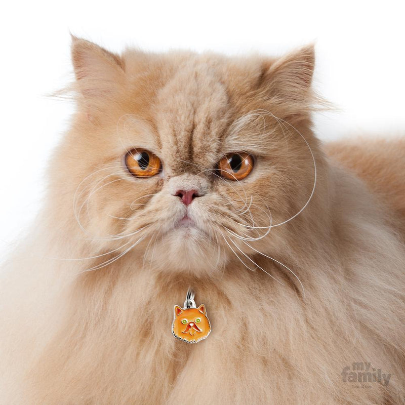 My Family Red Persian Dog I.D. Tags - 2B