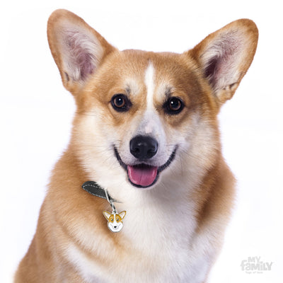 My Family Welsh Corgi