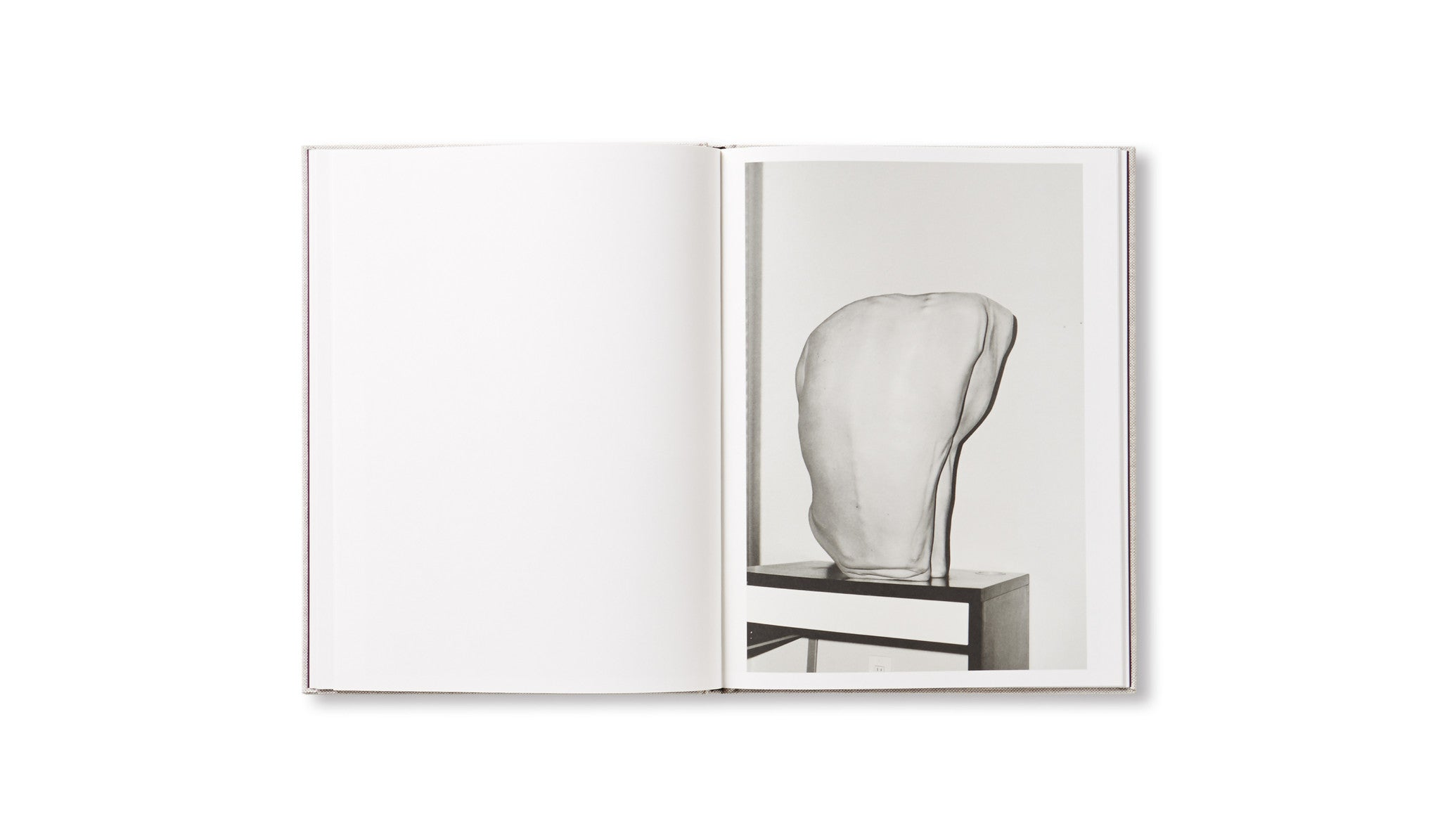 HESTER by Asger Carlsen [SIGNED]