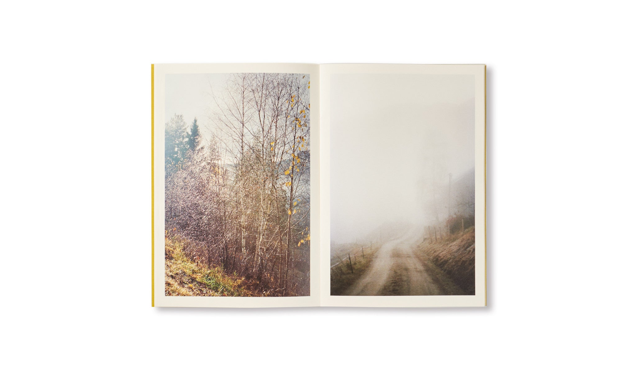 DISTANCE (PICTURES FOR AN UNTOLD STORY) by Ola Rindal [SIGNED]