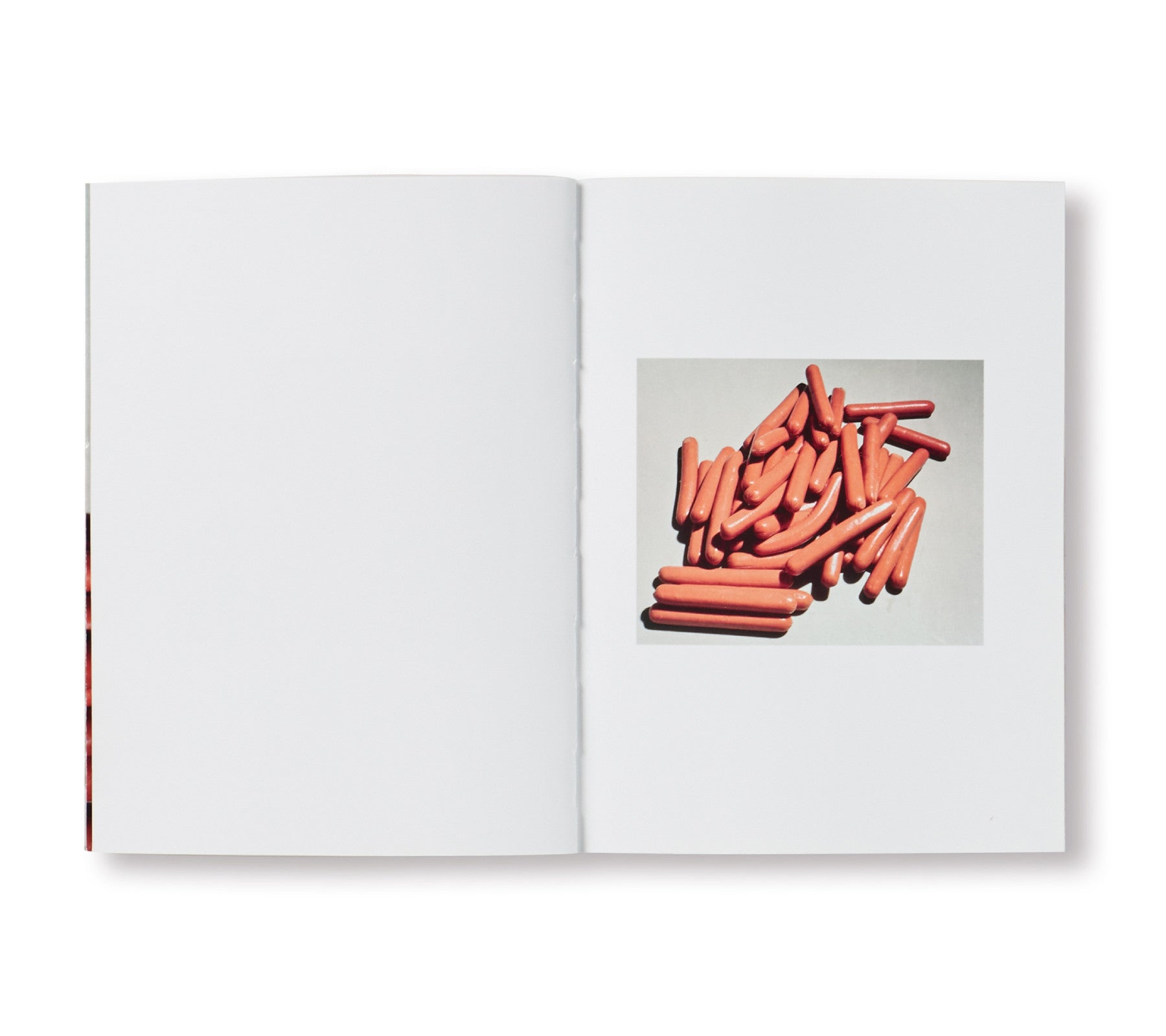 SPBH BOOK CLUB VOL.VII by Lucas Blalock [SIGNED]