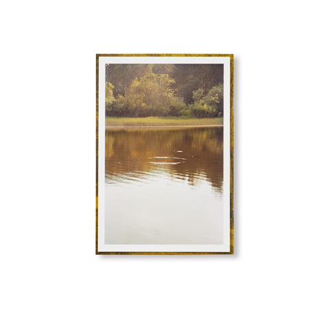 DISTANCE (PICTURES FOR AN UNTOLD STORY) by Ola Rindal [SPECIAL EDITION - B / SIGNED]