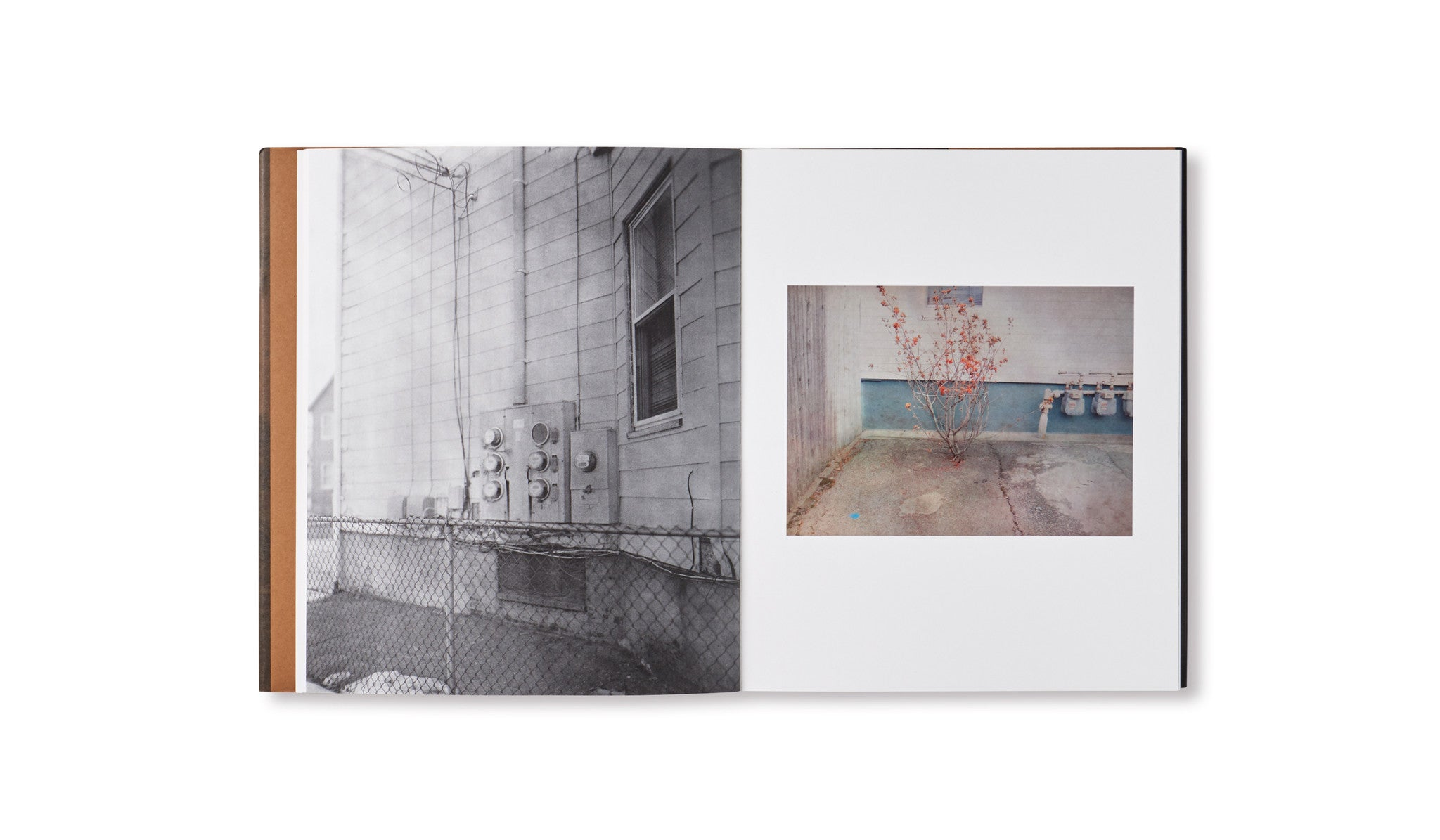 SUBSCRIPTION SERIES #4 by Christian Patterson, Alessandra Sanguinetti, Raymond Meeks and Wolfgang Tillmans