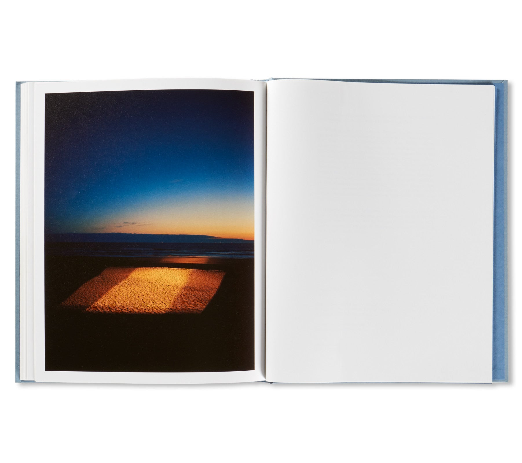 ZZYZX by Gregory Halpern [SPECIAL EDITION (TREE) / SIGNED]