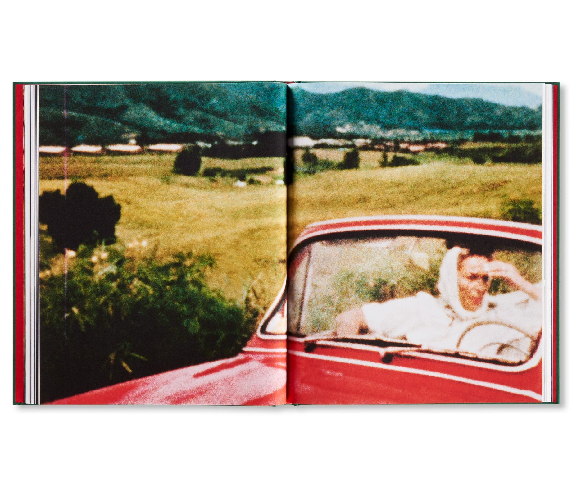 larry sultan pictures from home pdf