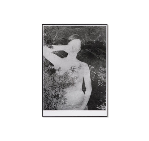 UNTITLED, 2014 by Daisuke Yokota [FRAMED / EXCLUSIVE]