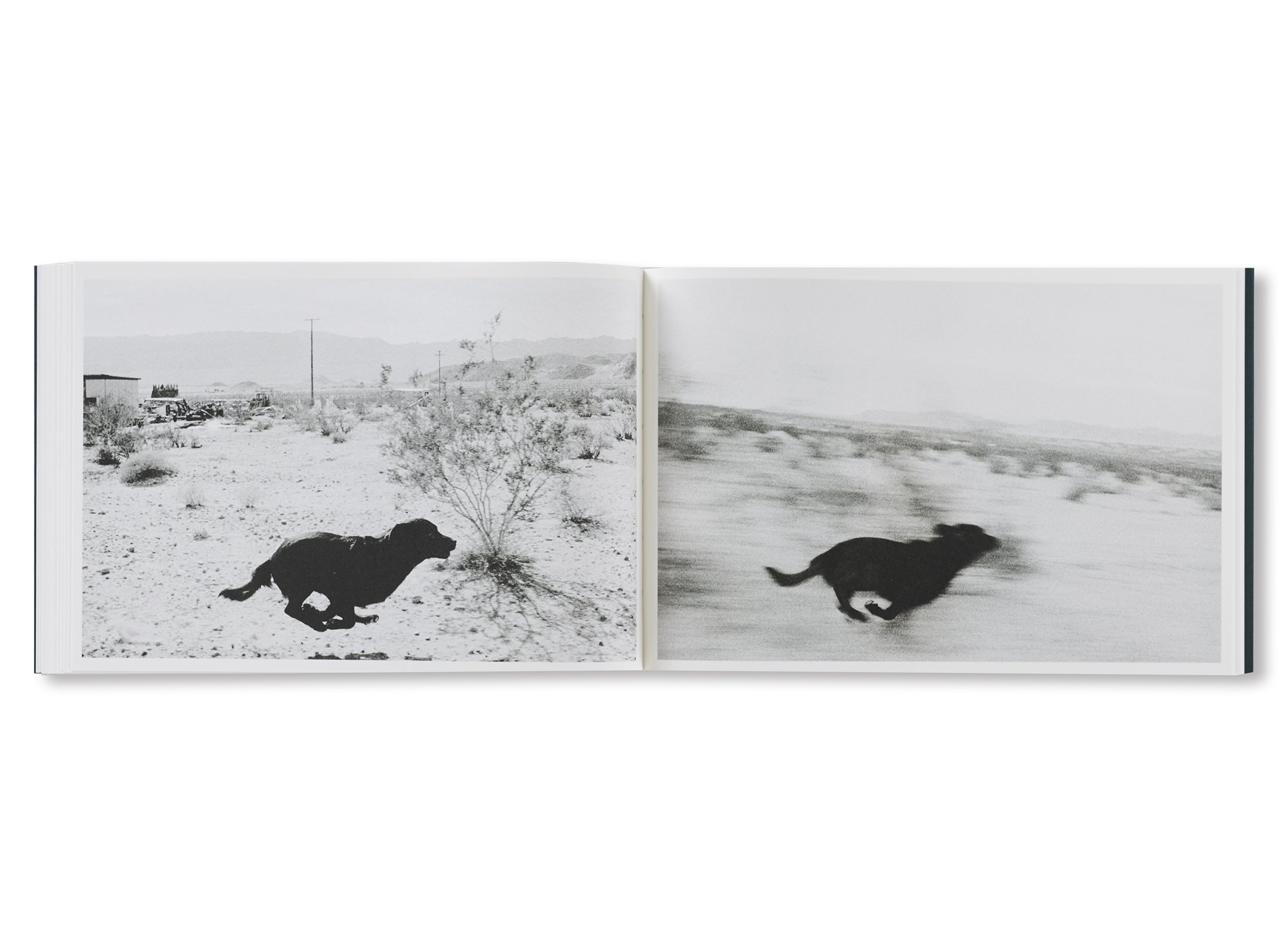 PICTURES FROM MOVING CARS by Joel Meyerowitz, Daido Moriyama, John Divola