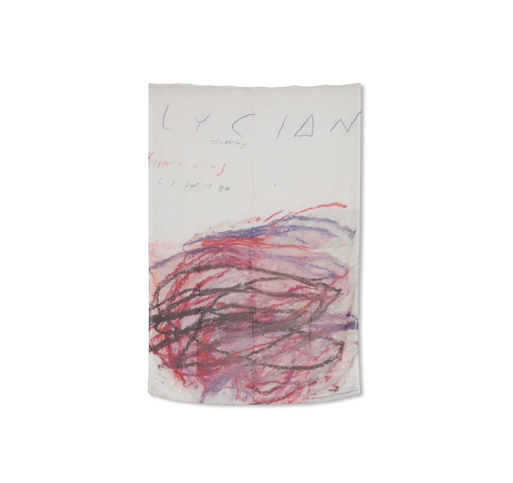 SCARF 'NYMPHIDIA' by Cy Twombly