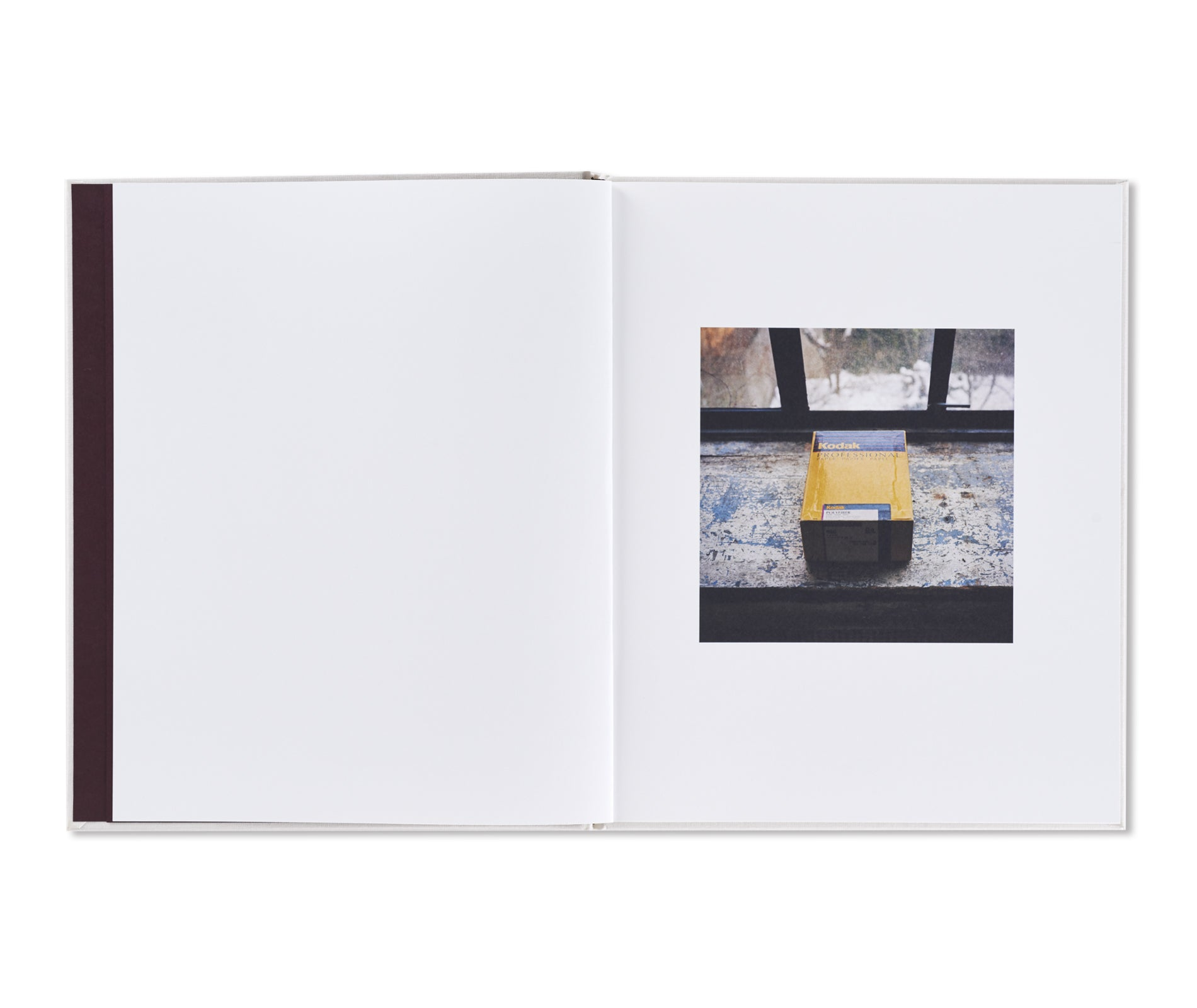 SAUL LEITER by François Halard [SECOND EDITION]
