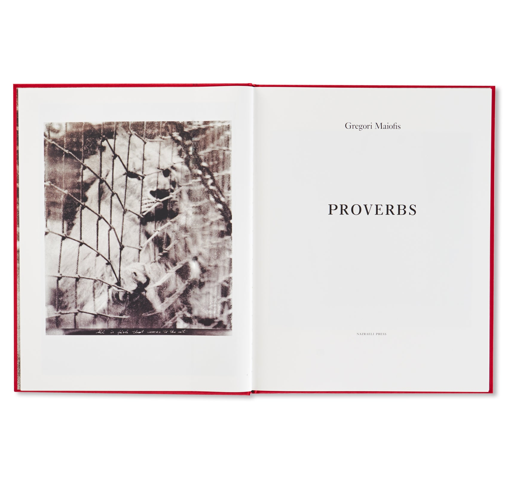 PROVERBS by Gregori Maiofis