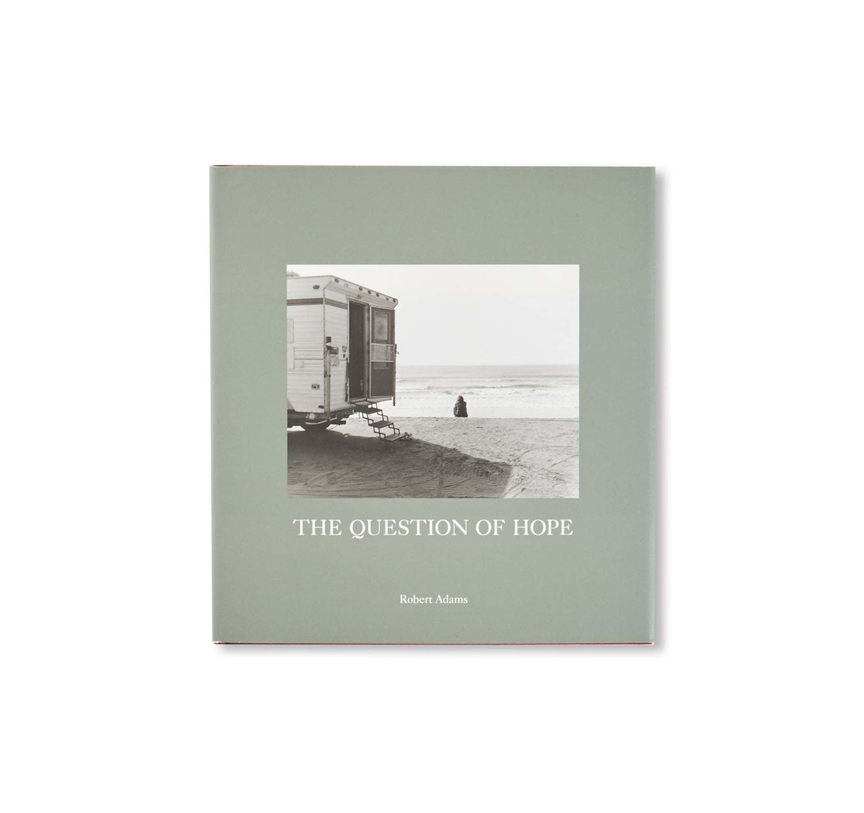 THE QUESTION OF HOPE by Robert Adams