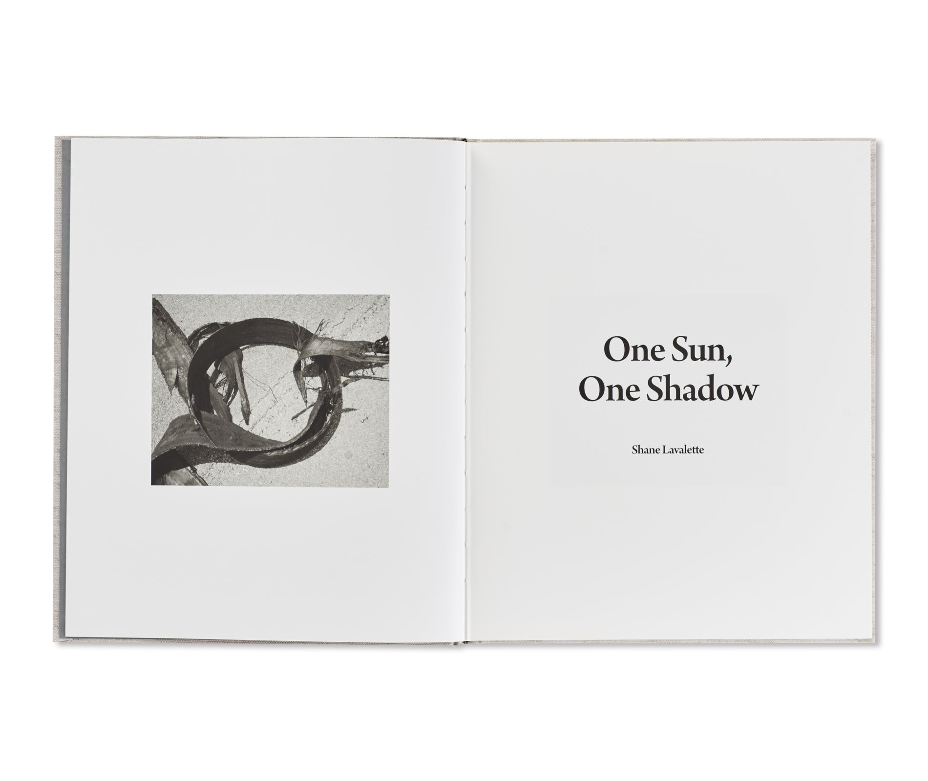 ONE SUN, ONE SHADOW by Shane Lavalette [SIGNED]