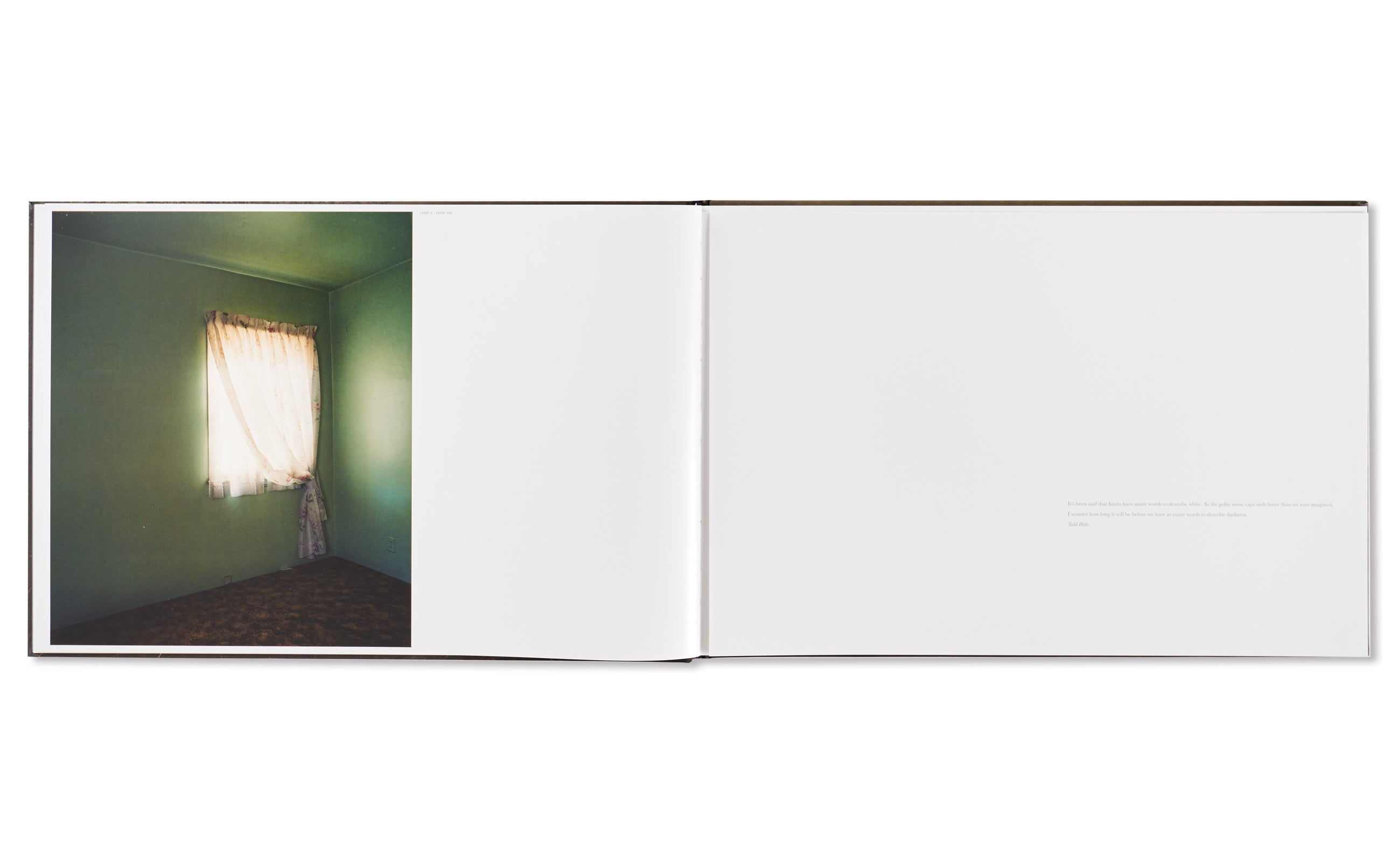 BRIGHT BLACK WORLD by Todd Hido [SIGNED]