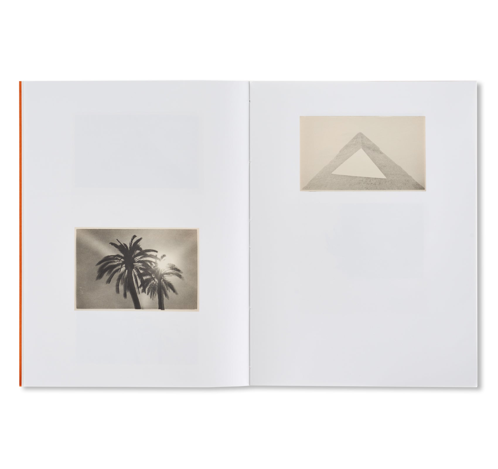 THE PYRAMIDS AND PALM TREES TEST by Bruno V. Roels