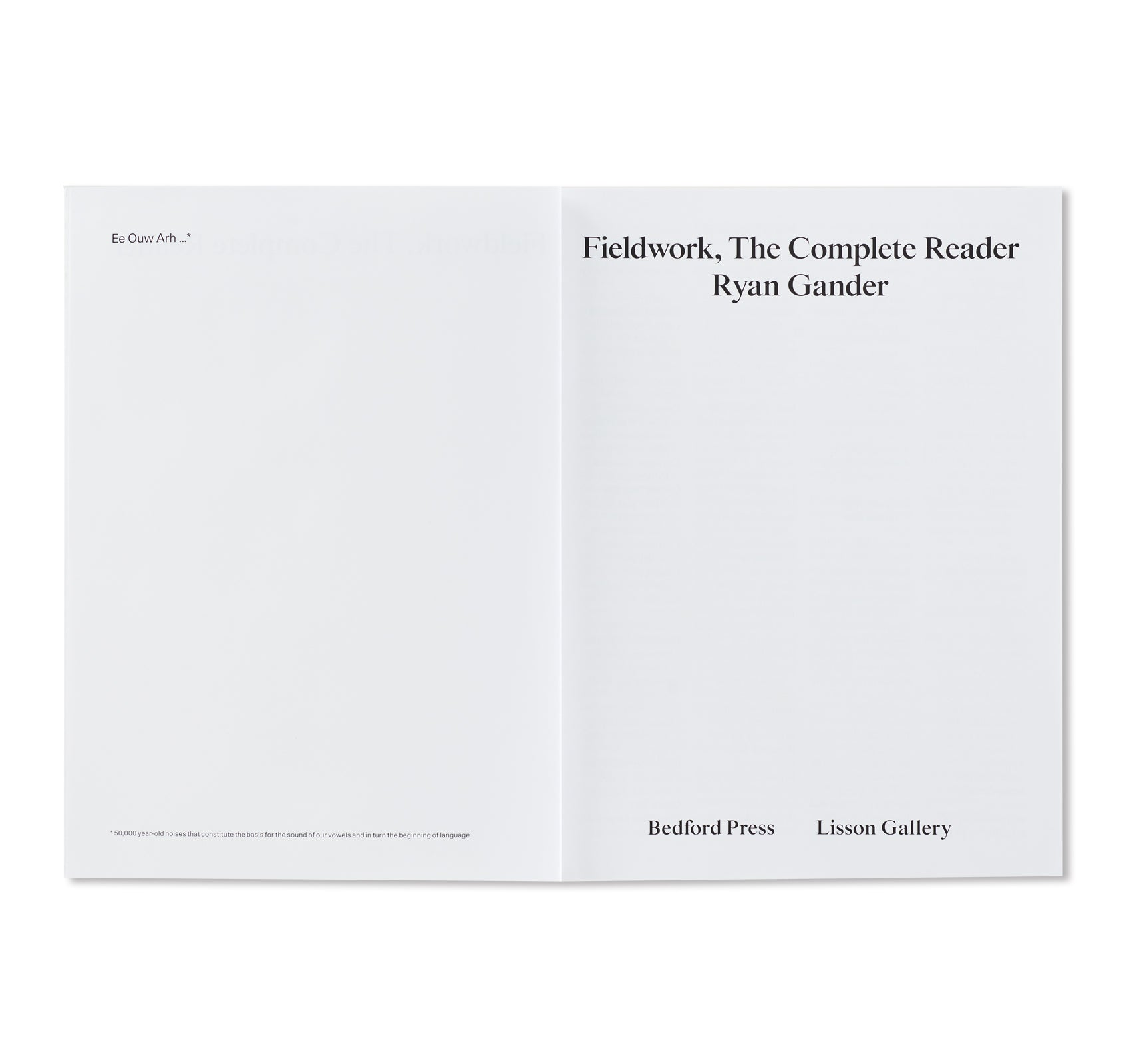 FIELDWORK, THE COMPLETE READER by Ryan Gander