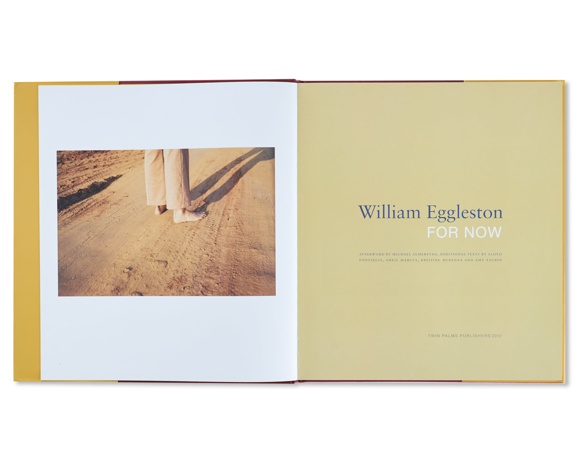 FOR NOW by William Eggleston
