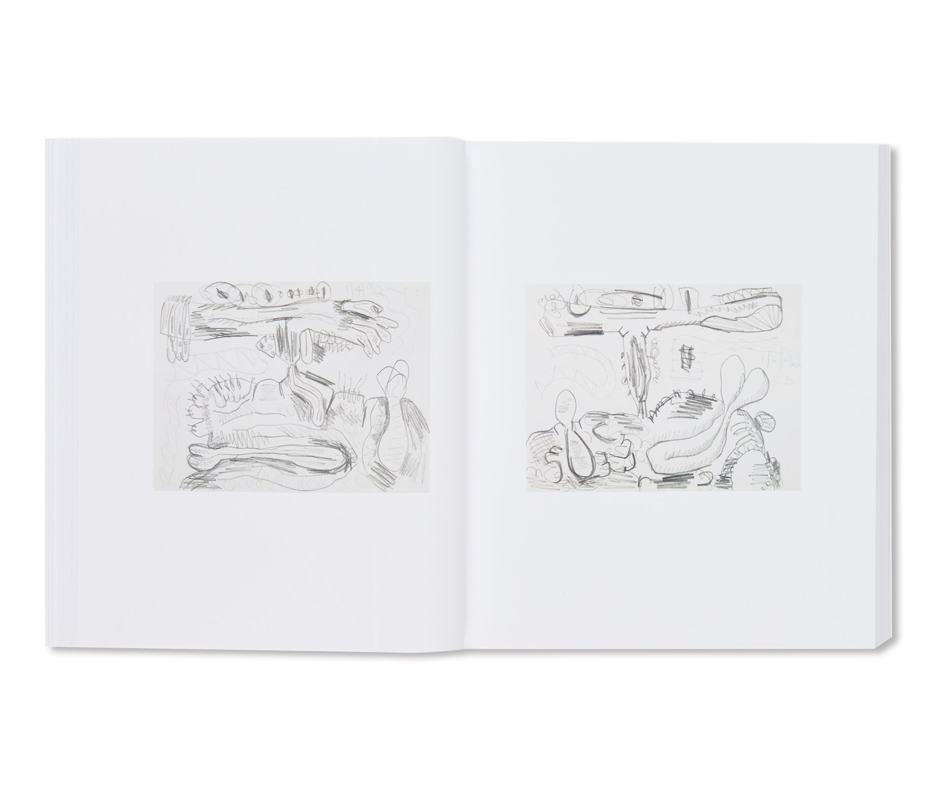 A DRAWING SURVEY by Carroll Dunham