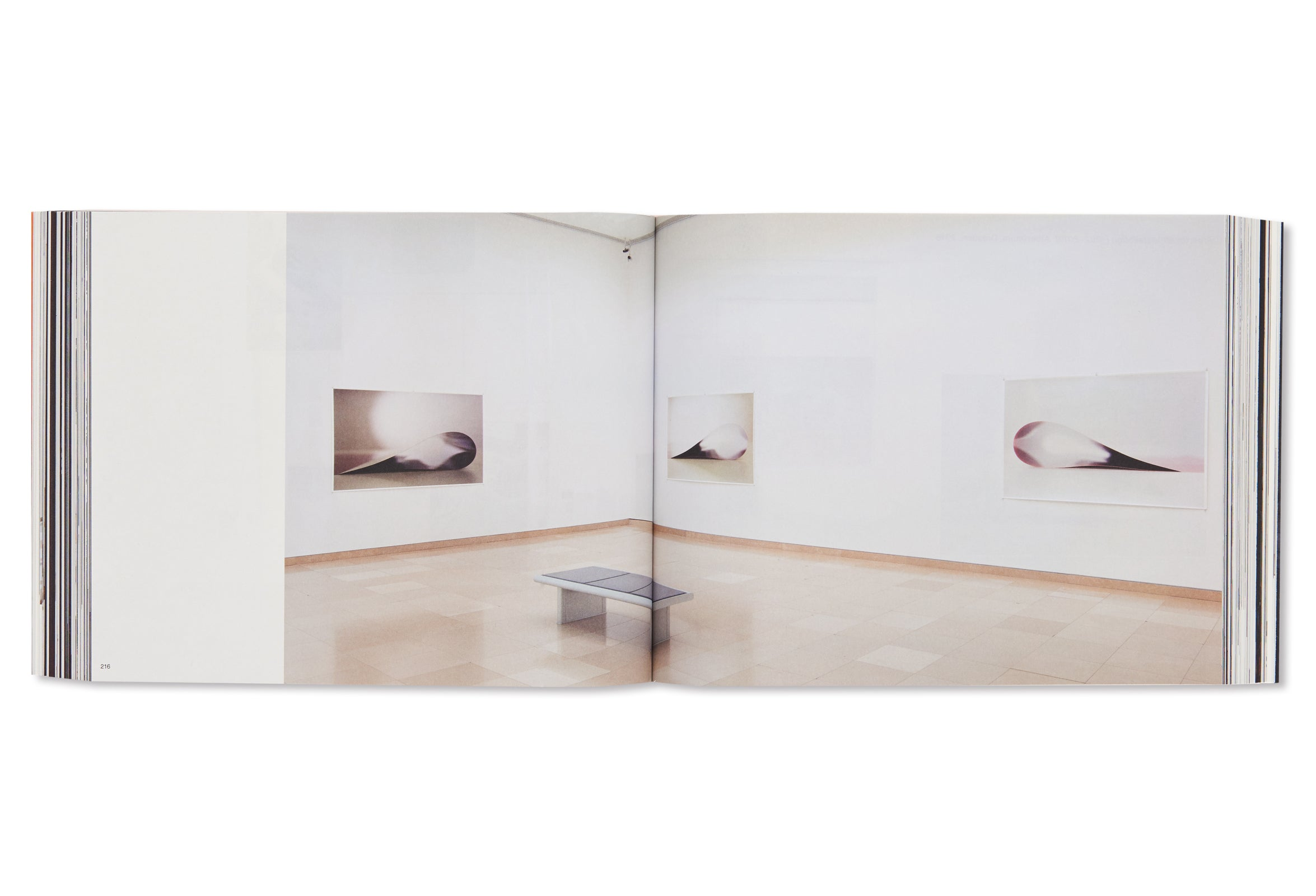 TODAY IS THE FIRST DAY by Wolfgang Tillmans