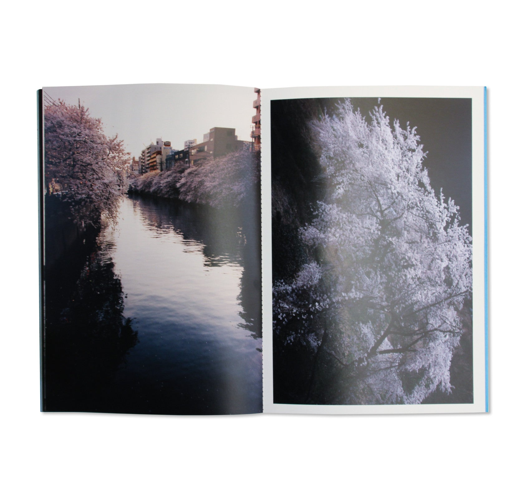 DROP OF LIGHT TO RUSHING WATER by Keiko Nomura [SIGNED]