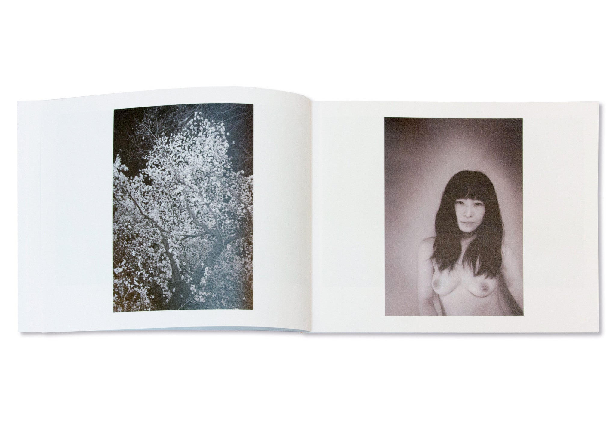 RED WATER by Keiko Nomura [SIGNED]