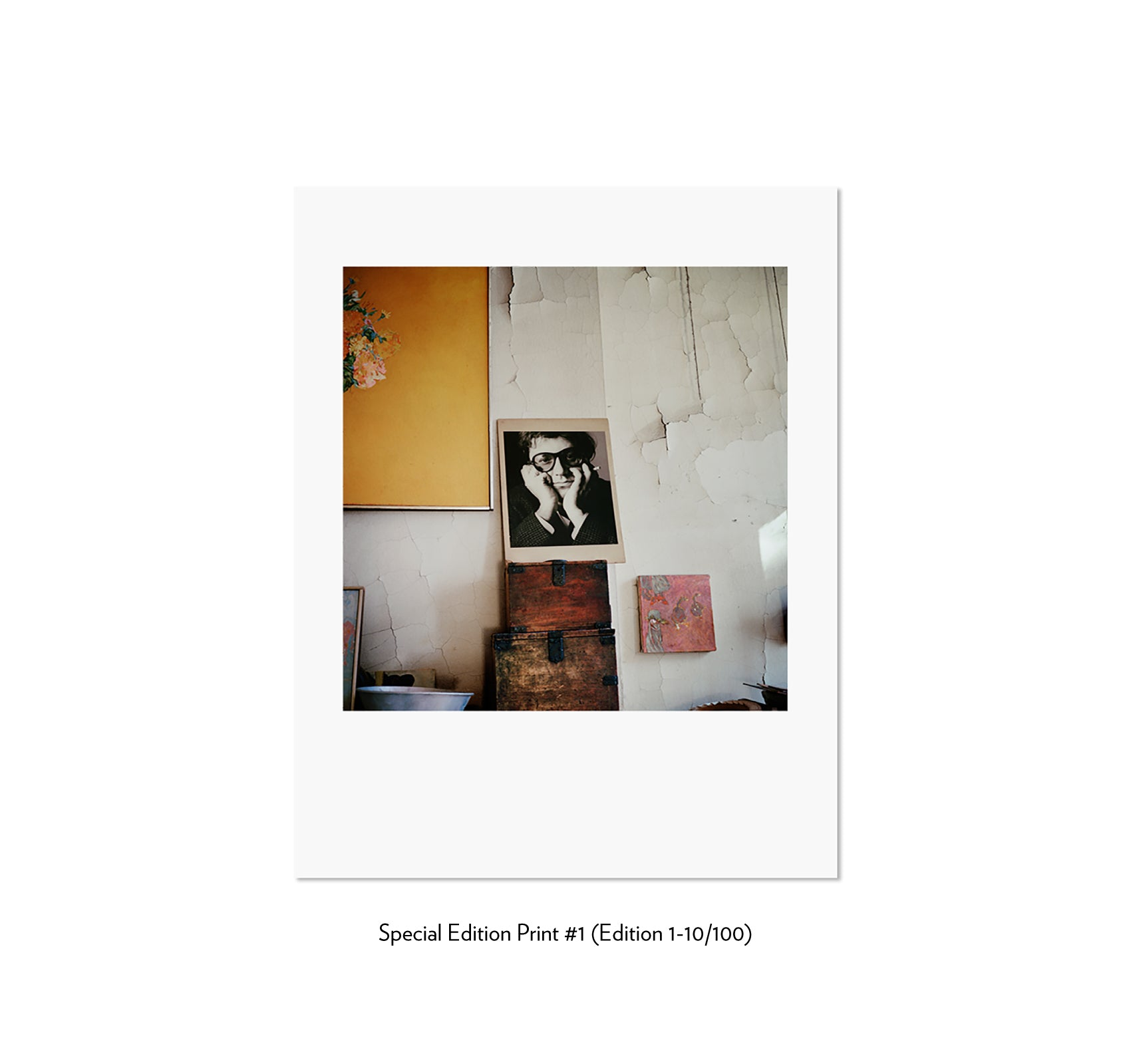 SAUL LEITER by François Halard [JAPANESE SPECIAL EDITION]