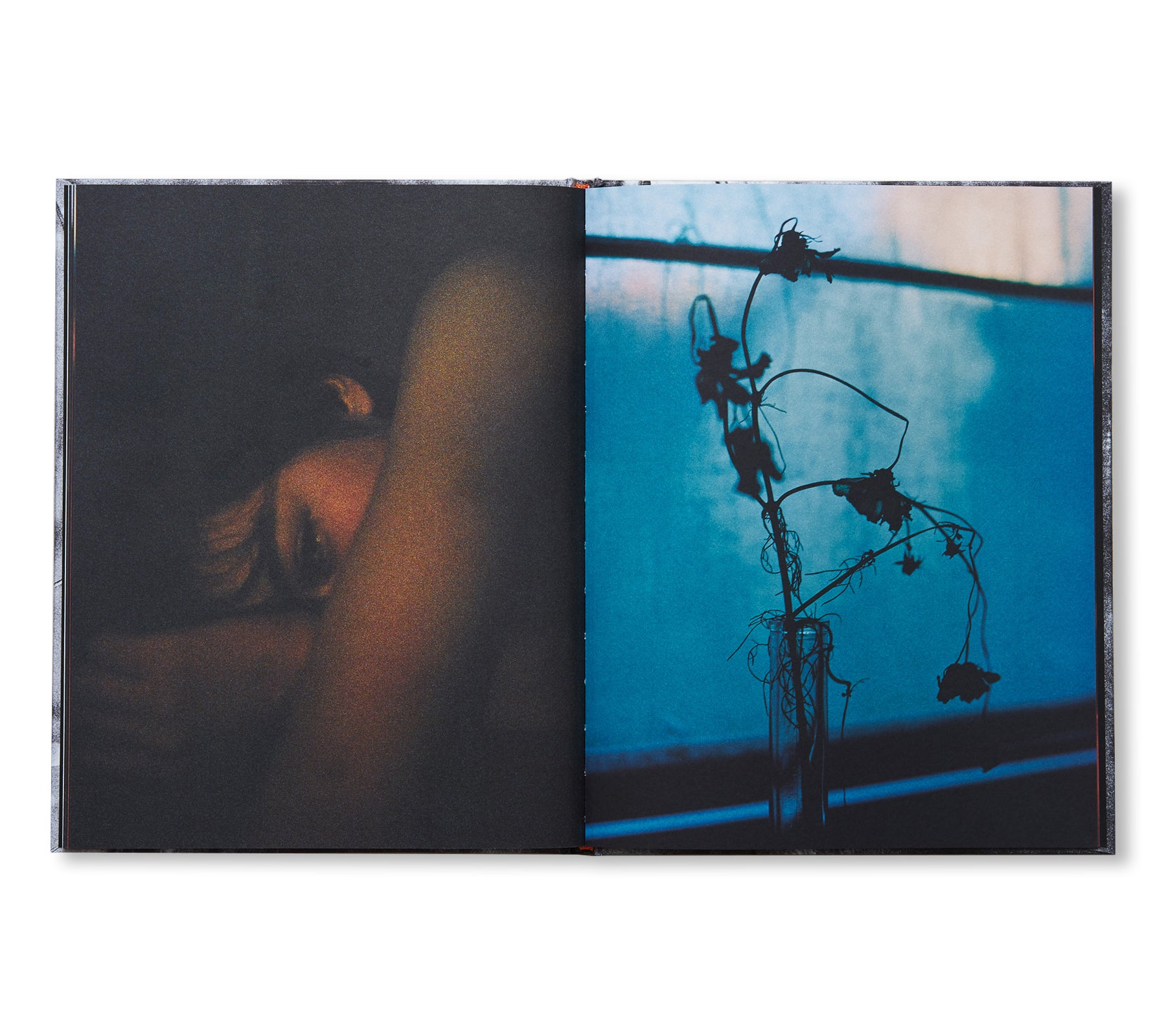 NIGHT TALES by Yusaku Aoki [SIGNED]