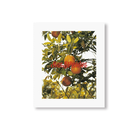 ORANGE GROVE by Roe Ethridge [SIGNED]
