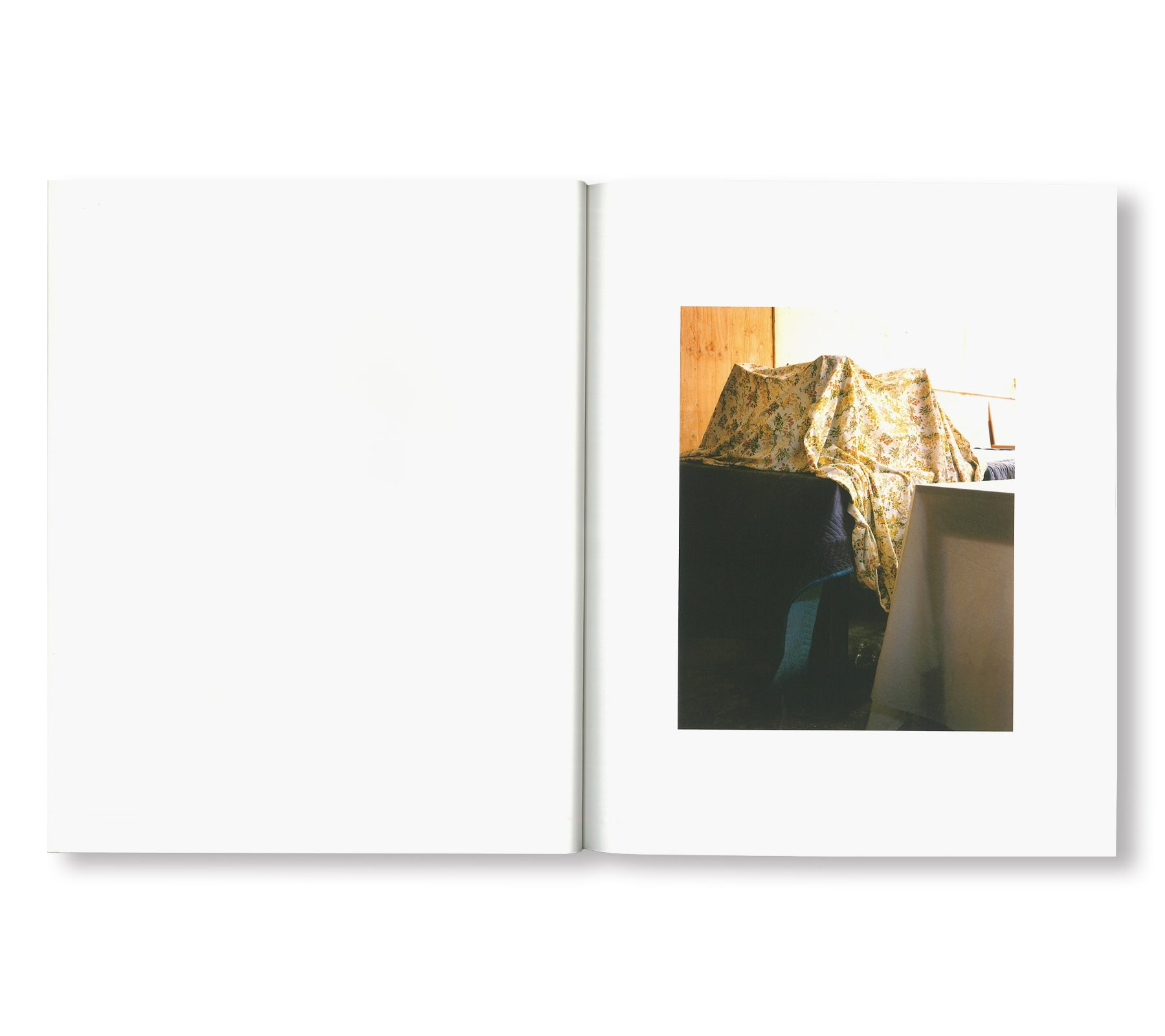 SPARE BEDROOM by Roe Ethridge [SIGNED]