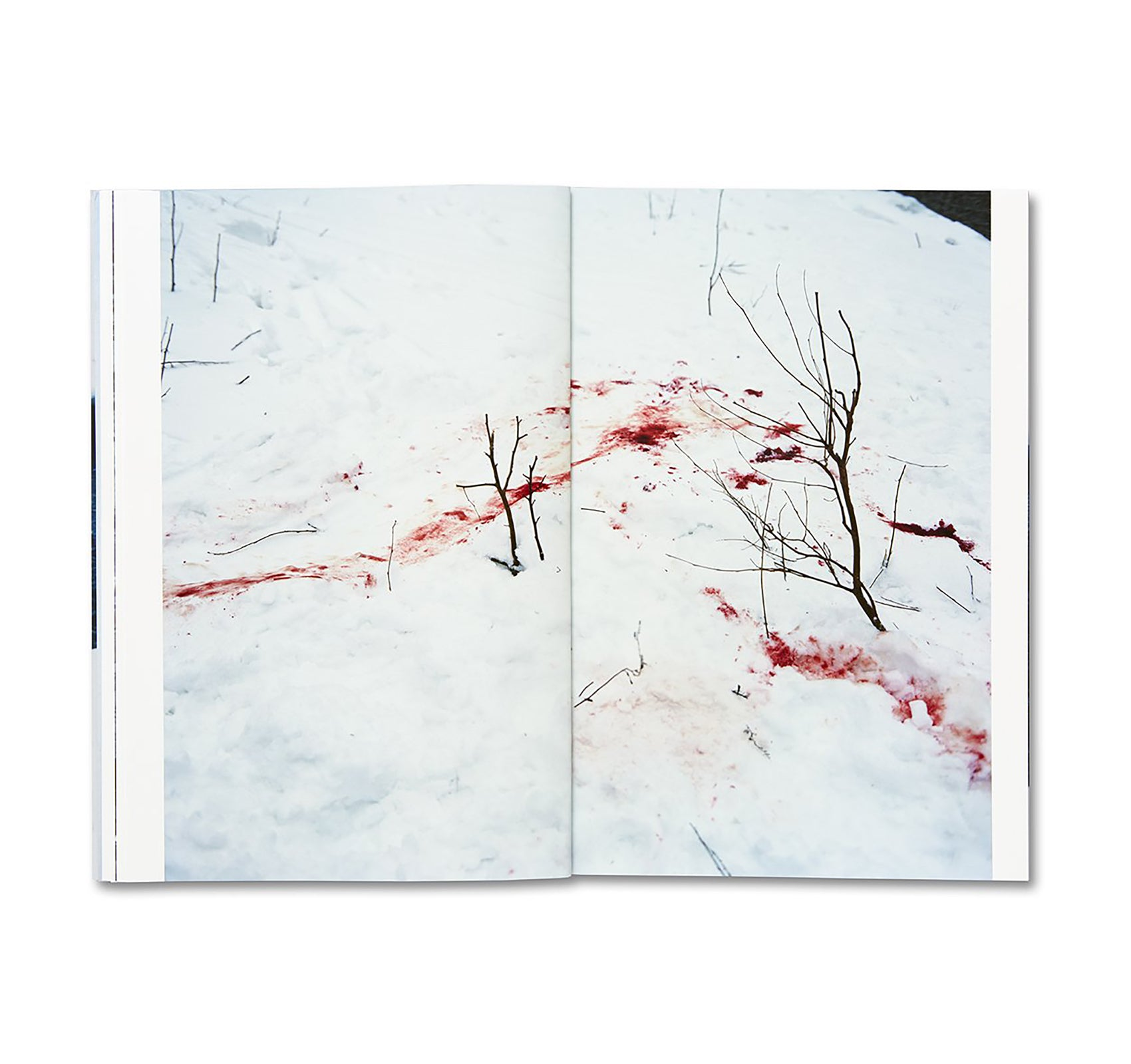TRAILS by Takashi Homma [SIGNED]