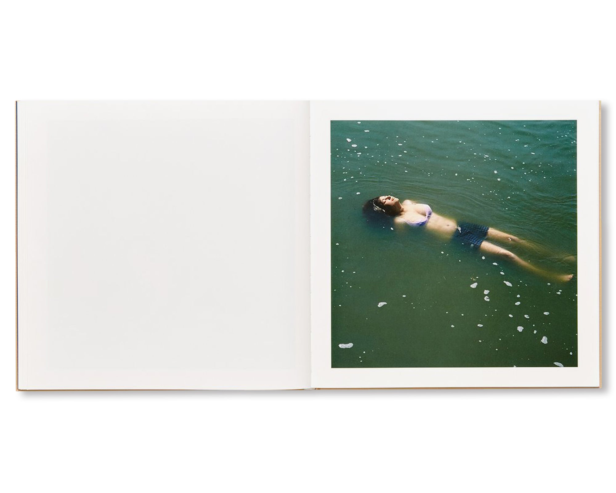 THE ADVENTURES OF GUILLE AND BELINDA AND THE ILLUSION OF AN EVERLASTING SUMMER by Alessandra Sanguinetti [SIGNED]