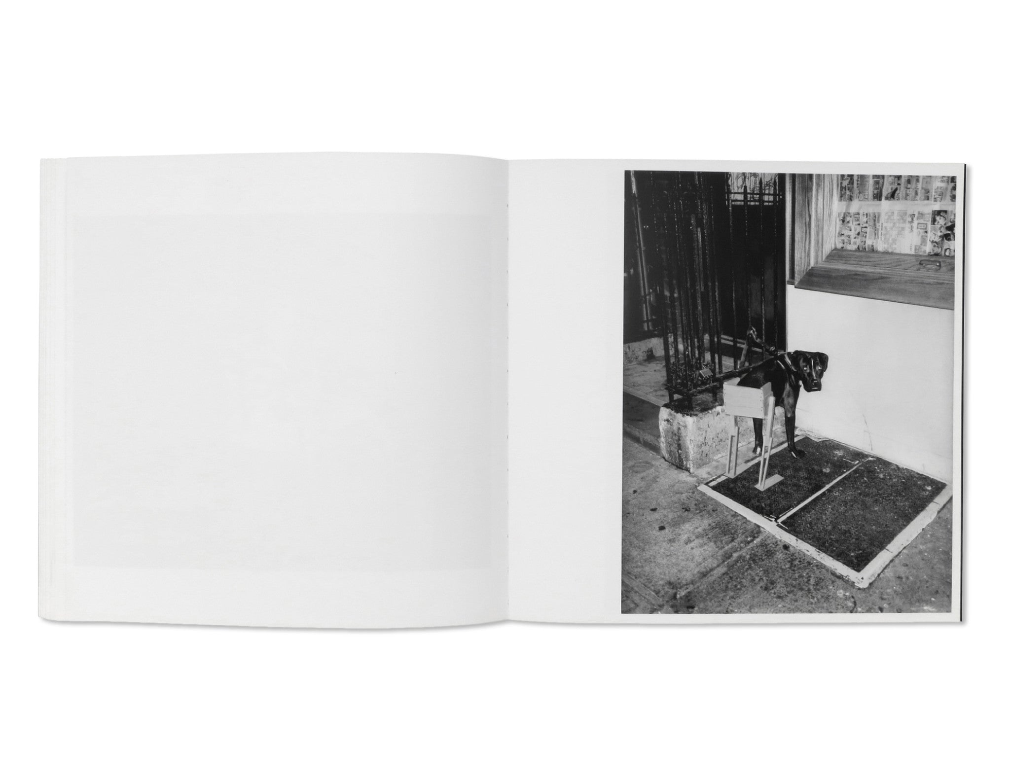 WRONG by Asger Carlsen [SIGNED]