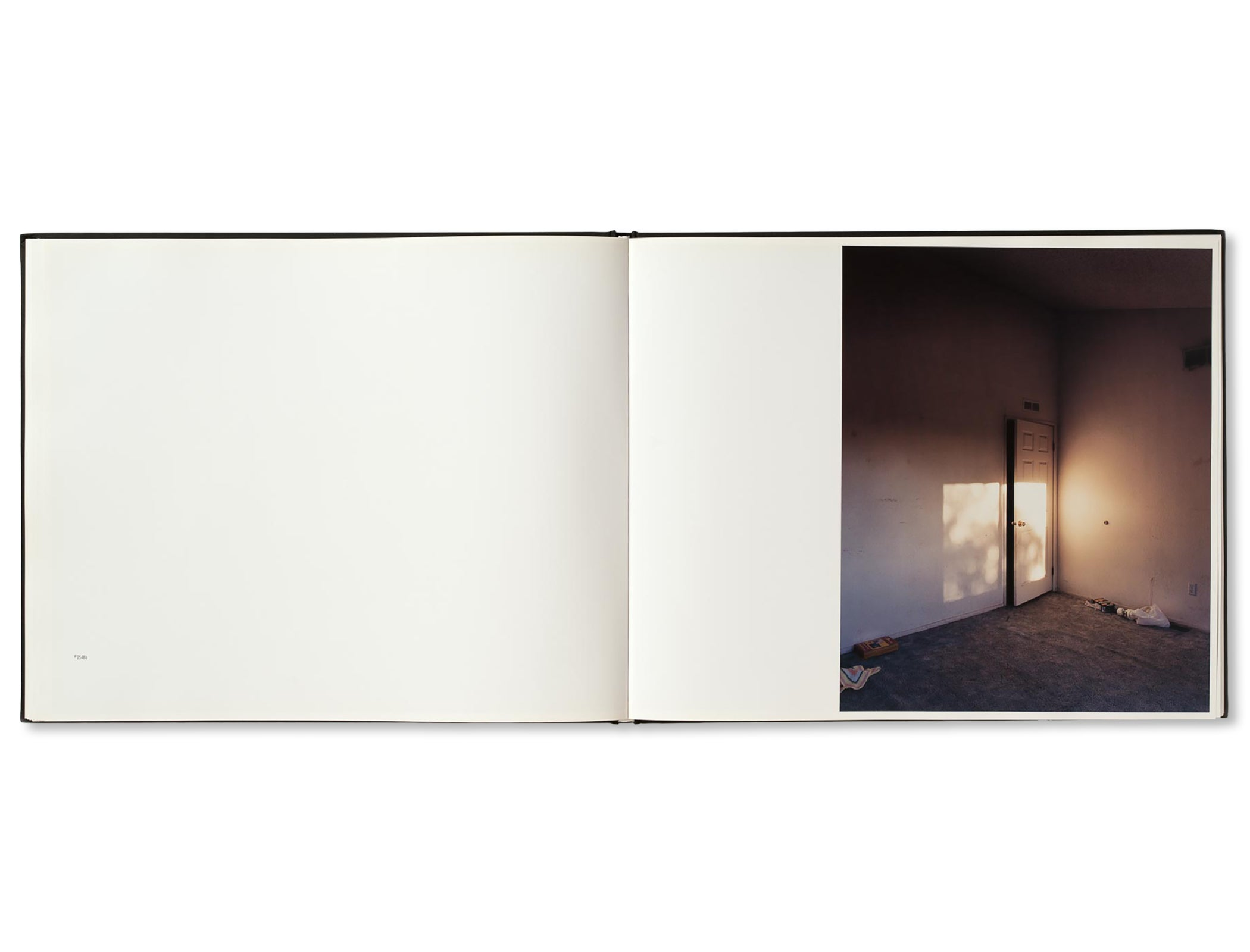 BETWEEN THE TWO by Todd Hido [SECOND EDITION]