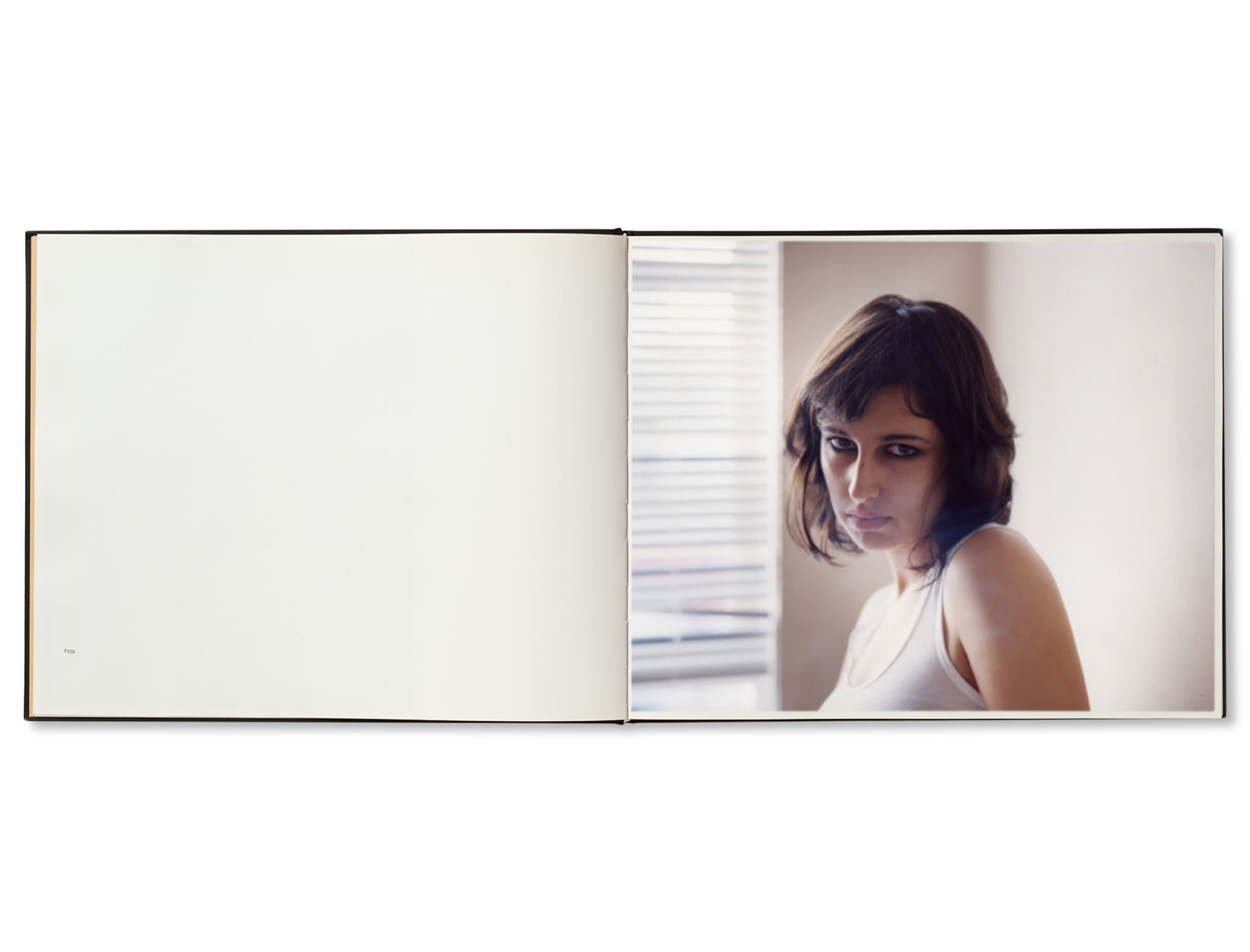 BETWEEN THE TWO by Todd Hido [FIRST EDITION]