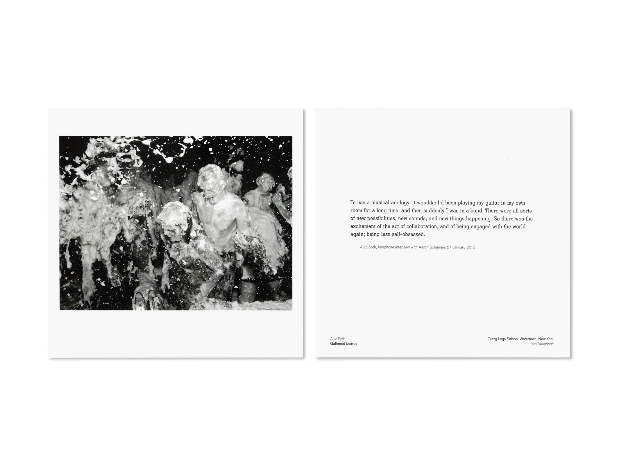 GATHERED LEAVES by Alec Soth