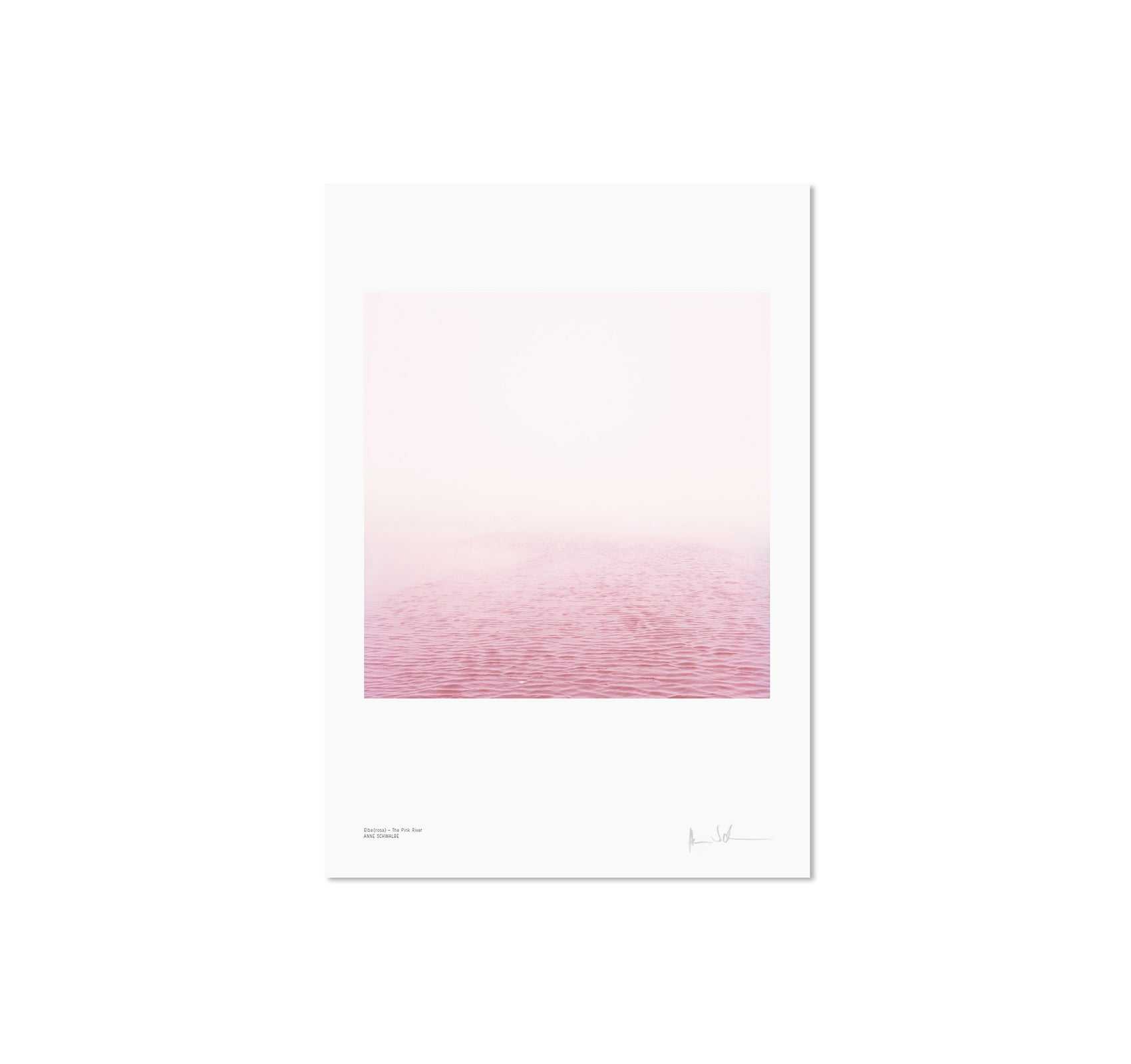 ELBE (ROSA) - THE PINK RIVER by Anne Schwalbe [SIGNED]